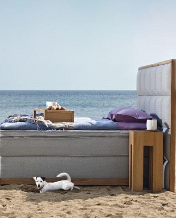 Pet friendly ξενοδοχεία και Coco-mat ύπνος - The Cover